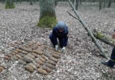 У лісосмузі неподалік Шепетівки виявили арсенал боєприпасів часів Другої світової війни