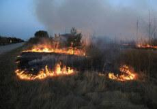 У Полонському районі вигоріло майже два гектари сухої трави