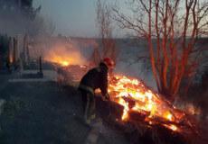 У Шепетівці ледь не згоріло міське кладовище