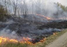 У Нетішині неподалік автозаправки ОККО сталася пожежа