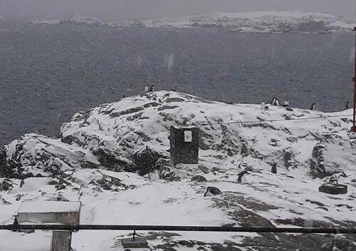 Шепетівчанин у складі 25-ї антарктичної експедиції дістався станції «Академік Вернадський»