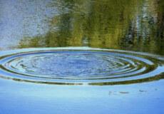 У Славутському районі водолази виловили з річки тіло рибалки