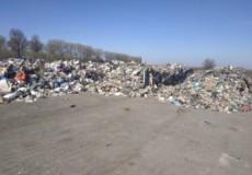 Львівське сміття напередодні Великодня підкинули Славутчині