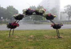 У середмісті Нетішина покрали квіти з металевих арок