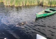 У Старокостянтинові потонув 68-річний рибалка