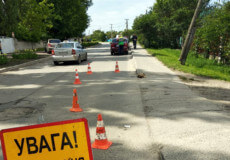 У Славуті внаслідок ДТП травмувався 73-річний велосипедист, його стан — важкий