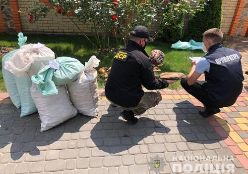 У сусідній з Хмельниччиною області вилучили бурштину на 1,2 мільйона доларів США