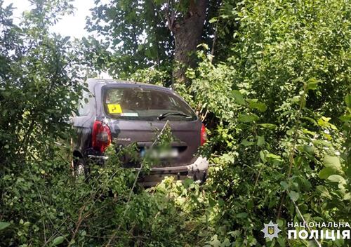 У Старокостянтинівському районі авто опинилося в кюветі — пасажирів ушпиталили