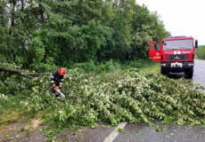 Негода на Хмельниччині: затопленні помешкання, перекритий рух транспорту, потрощені авто