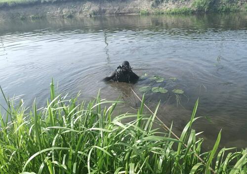 У Славуті водолази-рятувальники витягли з води тіло 13-річного хлопчика
