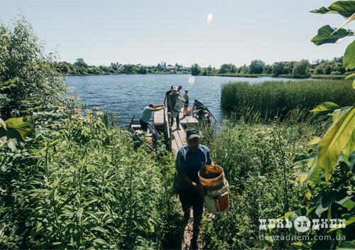 Три роки спільнота шепетівських рибалок вирощувала рибу на ставку «Парошка»