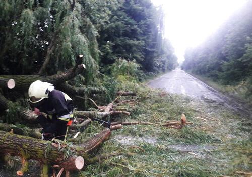 В Ізяславі через негоду дорогу перекрили дерева
