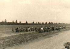 За 952 дні німецької окупації у Шепетівці закатовано більше 10000 місцевих жителів