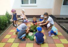 Садочки у Славуті відвідують майже 200 дітей