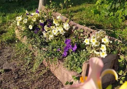 Жителі села на Хмельниччині вкотре здивували креативністю