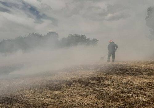 На Шепетівщині палало поле