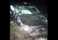 У Полонному водій не впорався з керуванням та злетів у кювет