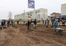 У Славуті після першої сесії VIII скликання, депутати висадили 30 катальп