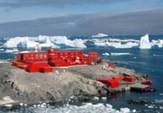 Коронавірус дістався Антарктиди: захворіло 36 полярників