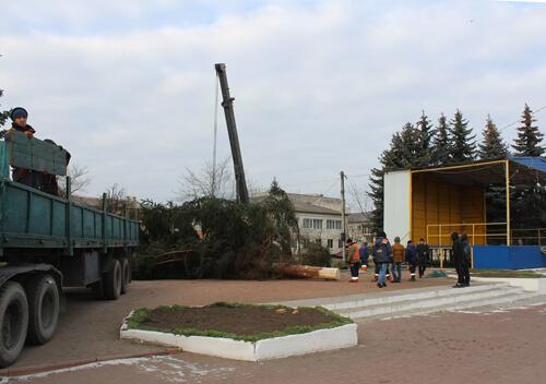 У Славуті підприємець подарував місту 16-метрову ялинку