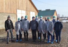 Представник Уряду відвідав сільськогосподарські підприємства у Коськові та Михайлючці