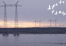 На Хмельницькій АЕС розповіли чи є загроза весняної повені на ставку-охолоджувачі