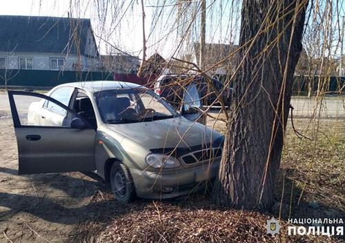 У Шепетівському районі 23-річна жінка вкрала авто та в'їхала на ньому в дерево