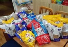 У Нетішині дошкільнята зібрали подарунки безпритульним чотирилапим