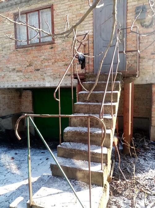 У Шепетівці чоловік скинув зі сходів суперника, що призвело до смерті останнього