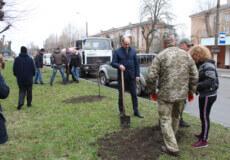 У Шепетівці посадовці та військові висадили 75 саджанців лип