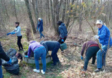 У Нетішинській громаді розчистили лісове джерело