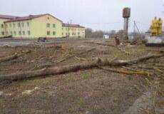 На Білогірщині довкола школи, яку будують з 1990 року, зрізали дерева