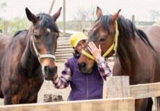 На Шепетівщині у любительки коней мешкають довгогриві терапевти