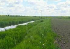 У Шепетівському районі аграрна фірма розорала прибережну смугу річки Корчик