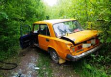 У Білогір'ї чоловік вкрав авто сусіда аби поповнити запаси спиртного, і влетів у дерево