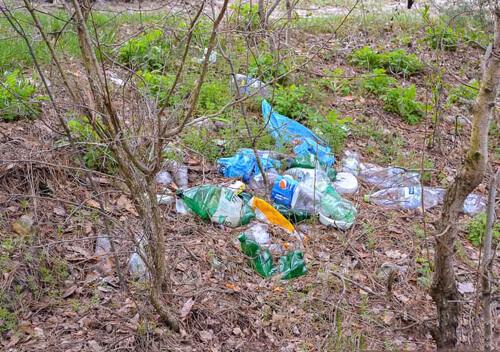 Шепетівський район: відпочивальники лишили «подяку» лісівникам на Голубому озері