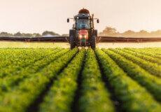 Від сьогодні у Шепетівській ТГ «Єлисейські поля» оброблятимуть посіви соняшника