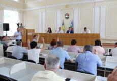 Депутати Шепетівської районної ради просять вивести землі спеціалізованого лісокомунльного підприємства з РЛП «Мальованка»