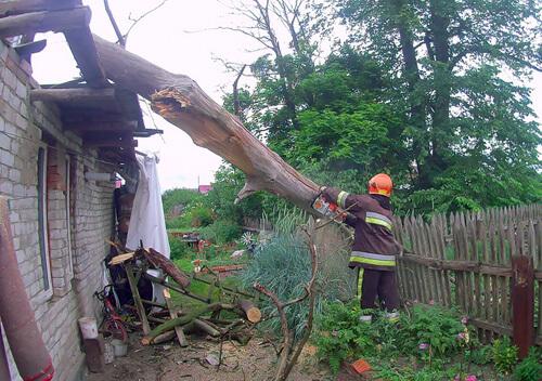 Славутські надзвичайники прибрали дерево з житлового будинку