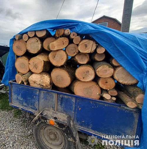 На Хмельниччині батько та син створили угруповання «чорних» лісорубів