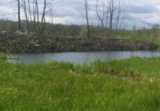 На Білогірщині невідомі особи незаконно зайняли частину берега