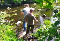 На Полонщині екоінспектори виявили зниження рівня розчиненого кисню в річці Хоморі