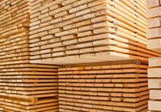 Лісгоспи Шепетівського району завдяки пілотному проєкту продали деревину прибутково