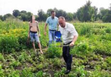 В одній з громад Шепетівщини селянин для себе виростив плантацію конопель
