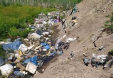 На території Шепетівщини хтось нишком захоронив шкідливі відходи