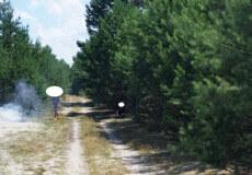 У лісосмузі біля Славути «на гарячому» застали паліїв кабелю