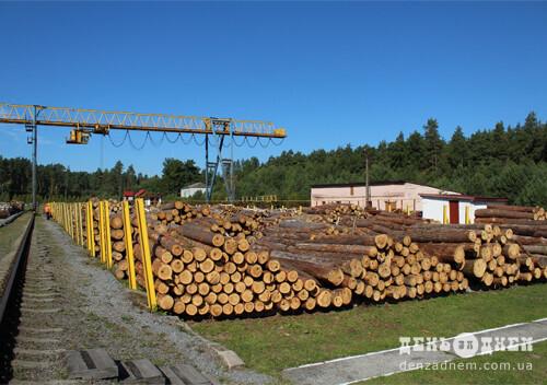 У держпідприємстві «Шепетівський лісгосп» уся продукція знаходить споживача