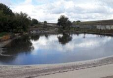 На Хмельниччині фермерське господарство зухвало скидає у річку Случ стоки з ознаками сечі