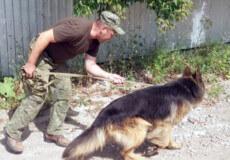 На Хмельниччині 10-річного хлопця, якого шукали пів ночі, собака знайшов у власному садку